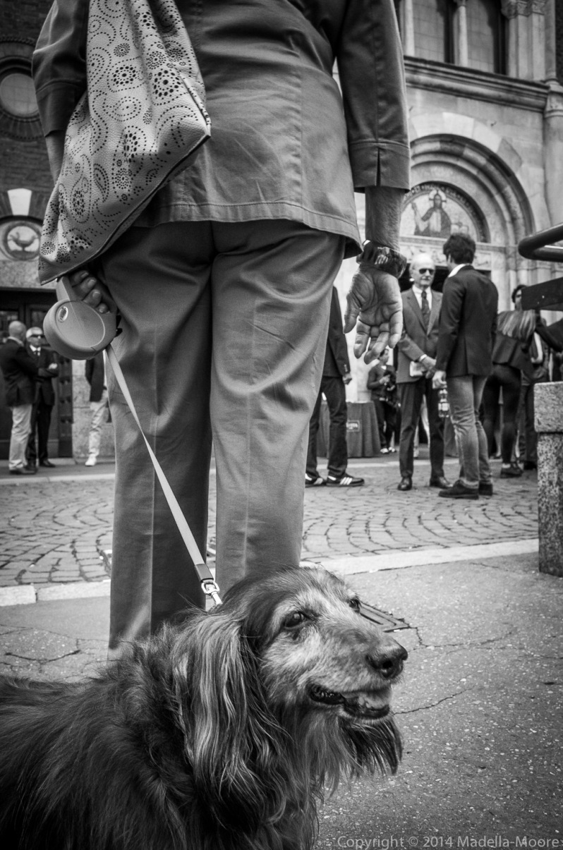 Woman walking dog, Milan, Italy; Street Photography