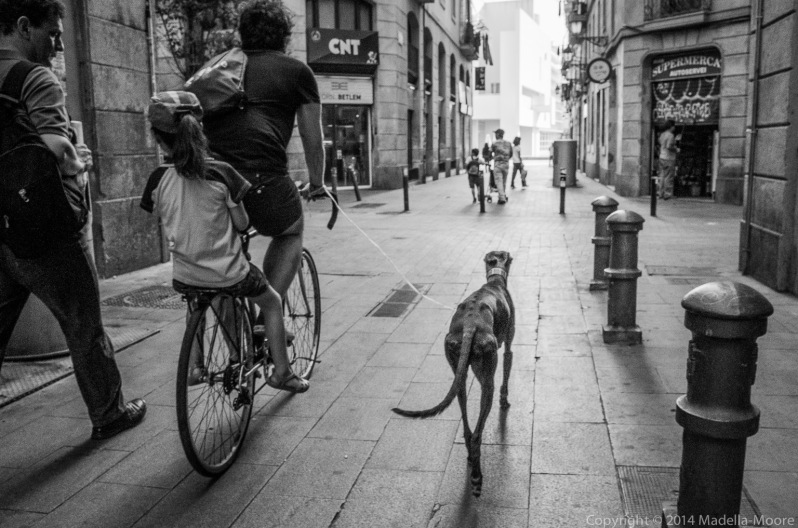 Cyclist with child and greyhound on a leash, Barcelona.