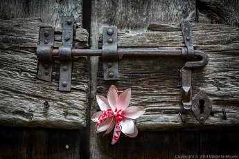 Old Door, Sanico, Italy
