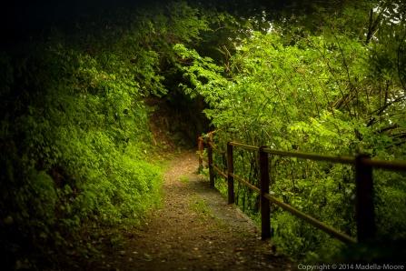 Old mountain path, Mornico, Italy