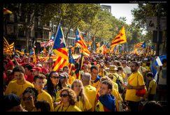 Protesters and Catalan flags, La Diada, Barcelona