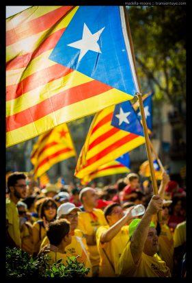 Catalan Independence Flags, La Diada, Barcelona