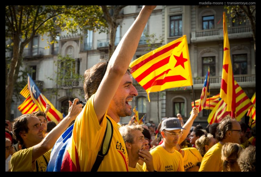 Catalan Independence Protetsters at La Diada, Barcelona