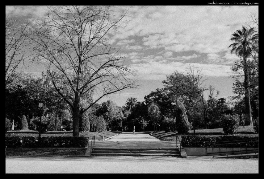 Parca de la Ciutadella, Barcelona. Leica M7.
