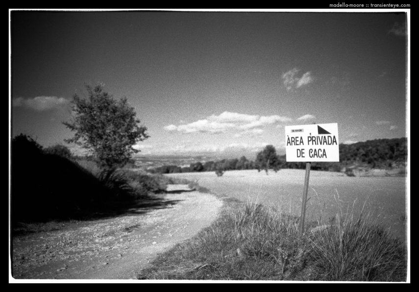 Area Privada de Caca, Seva, Catalunya. Leica M7 with Zeiss ZM 2/35.