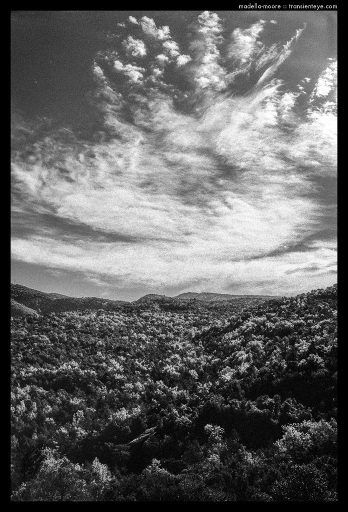 Parc Natural de Montseny, Catalunya. Leica M7 with Zeiss Biogon 2/35 and Ilford HP5 plus.