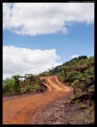 Dark red tracks cut through the landscape.