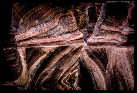 Water Carved Canyon Features, Zion National Park