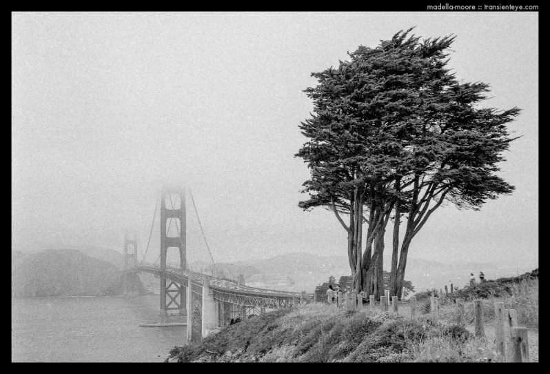Golden Gate Bridge, San Francisco - Ilford HP5+ Black and White