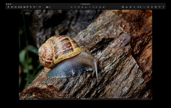 Capture One: final image.