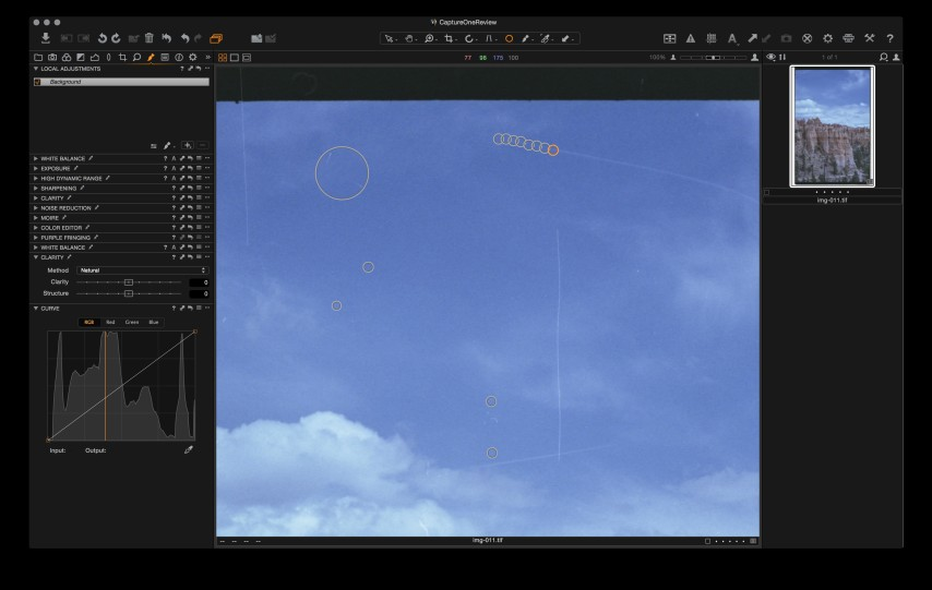 Capture One's spot removal tool.
