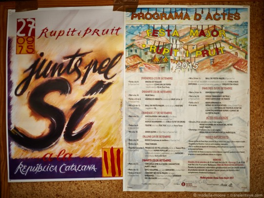 Independence Campaign Poster, Catalunya