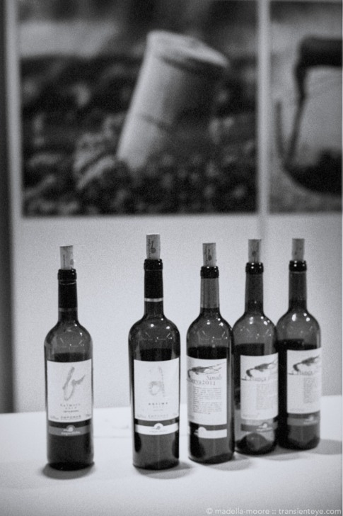 TransientEye-Barcelona-Merce-Wine-Tasting-1380-roll20-972