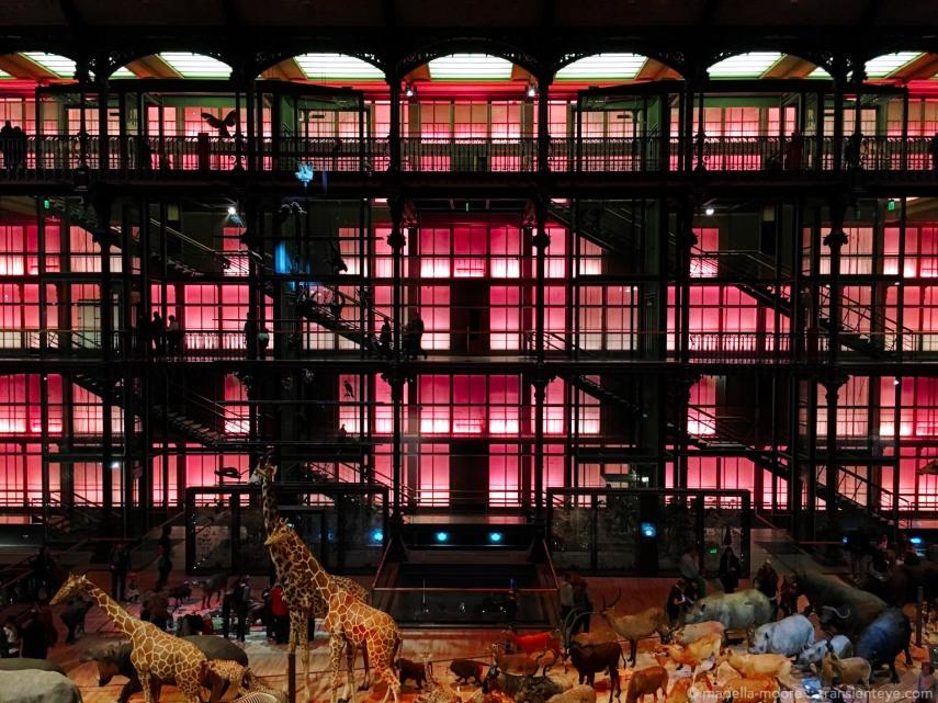 Grande Galerie de l'Évolution, Paris.