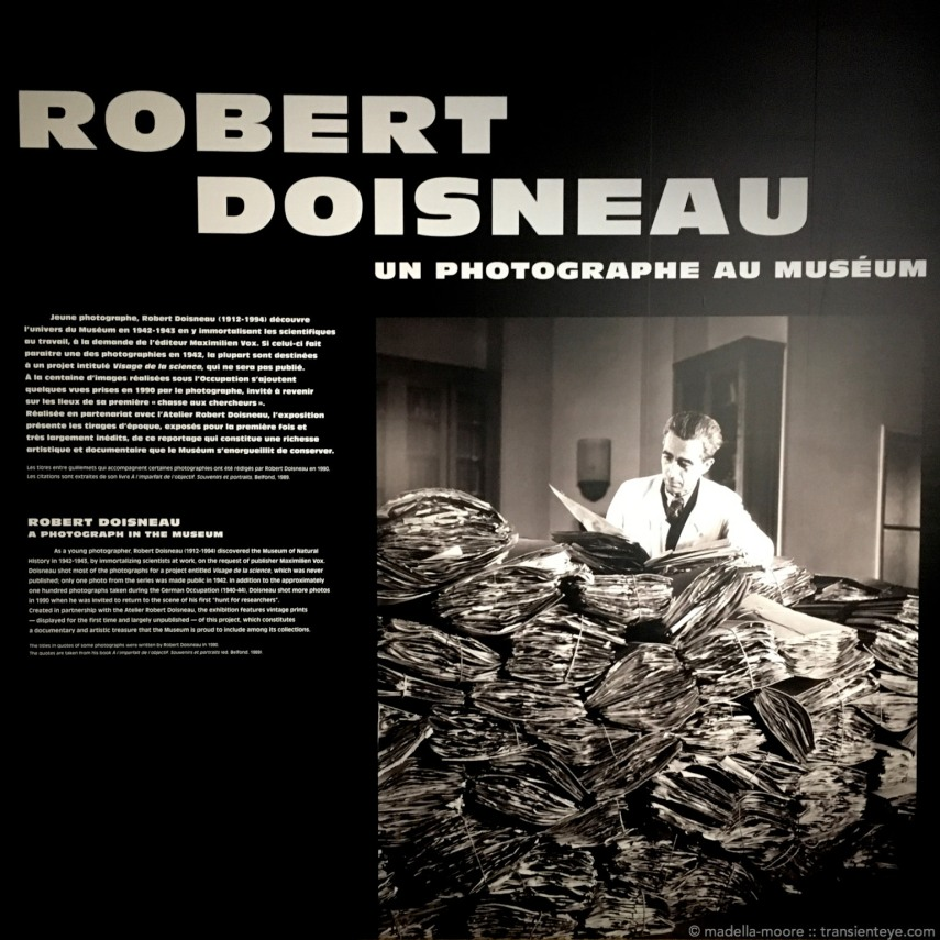 Robert Doisneau at the Grande Galerie de l'Évolution, Paris.