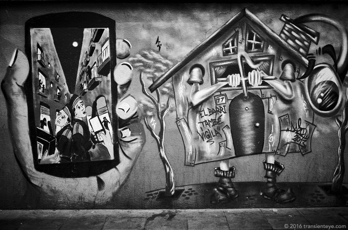 Street Art in the Raval, Barcelona. Ricoh GR, processed to Black and White in Capture One Pro 9.
