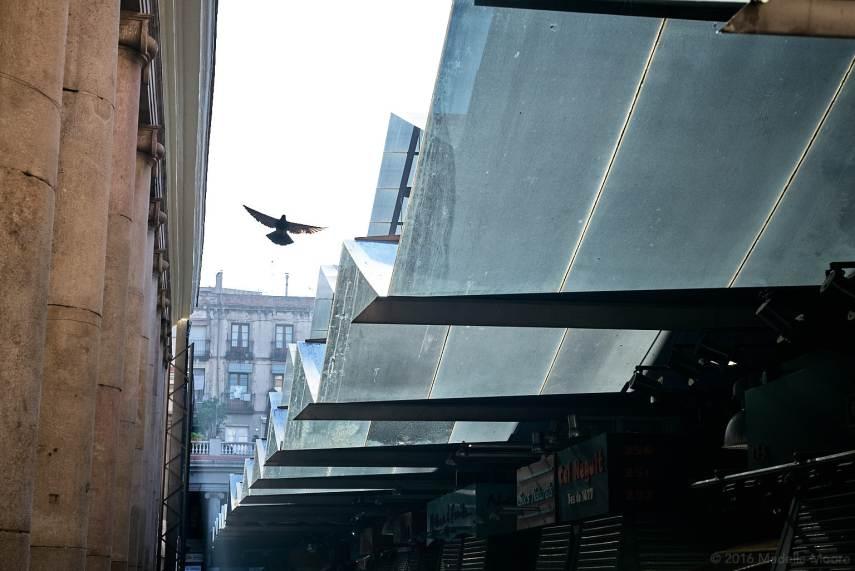 La Boqueria, Barcelona
