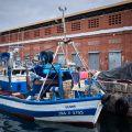 Fishing boats, Port Vell,Barcelona.