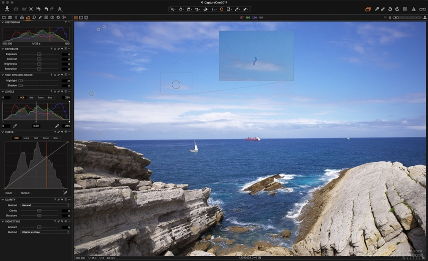 Cloning out dust spots in Capture One. This particular cluster of dust affected several days of landscape images, creating a problem when processing the RAW files.