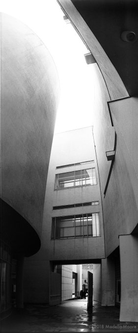 The MACBA, Barcelona.