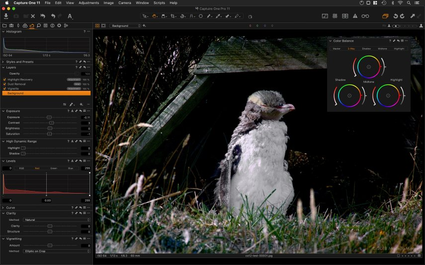 Capture One 11 User Interface